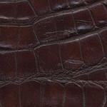 Крокодил-коньяк